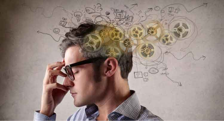 O conceito de cérebro trino oferece elementos para termos melhor controle de nossos sentimentos, usando-os em benefício de negociações - tão comuns em compras.